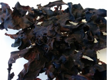 Dulse (dried)